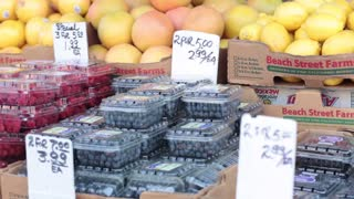 Blueberries for sale fruit stand