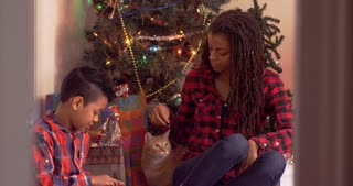 Mother and son dropping treats for a tabby cat in front of a blinking Christmas tree - mixed - slow motion