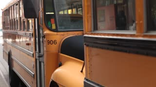 Yellow school buses parked pan