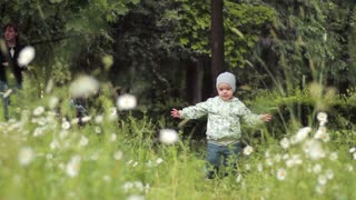 A little baby boy walking in spring park on daisy meadow