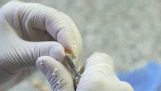 Closeup of a dental technician making of denture in a dental lab