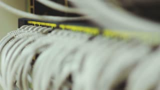 Internet cables connected in network hub. Selective focus and shallow depth of field