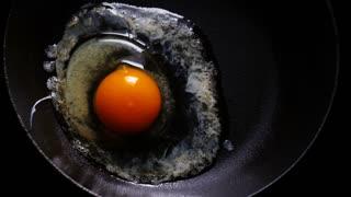 Egg cooks on frying pan