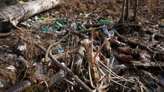 Garbage dump in the forest, environmental pollution