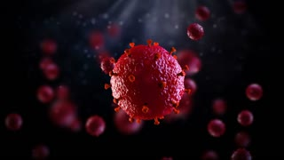 Virus Cells under microscope