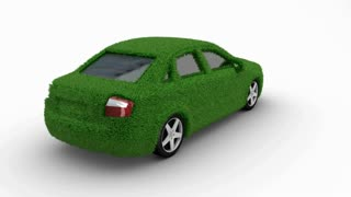 Eco car made of grass looping with matte