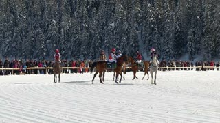 "horses and riders in slow motion before ""White Turf"" Grand Prix on February 23rd, 2014 in St. Moritz (Switzerland)"