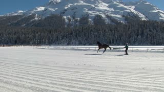 """skikjöring and horses in slow motion before """"White Turf"""" Grand Prix on February 23rd, 2014 in St. Moritz (Switzerland)"""
