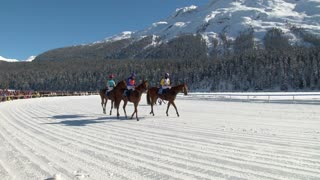 """The European Championship of horserace on the """"White Turf"""" in the magnificent scenery of the Upper Engadine on February 23rd, 2014 in St. Moritz (Switzerland)"""