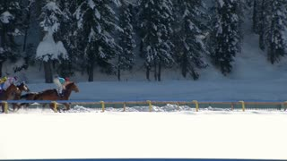 "The European Championship of horserace on the ""White Turf"" in the magnificent scenery of the Upper Engadine on February 23rd, 2014 in St. Moritz (Switzerland)"