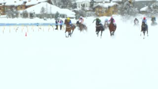 The Grand Prix horserace ended in a fall of five horses and riders on February 9th, 2014 in St. Moritz (Switzerland)