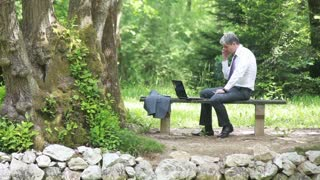 A businessman using his laptop in the nature and speaking on his mobile phone...