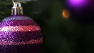 A close up shot of a purple christmas tree ball hanging on a tree
