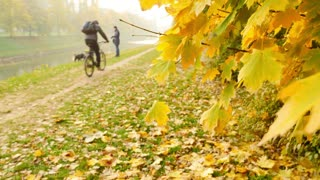 A fall scene with colorful leaves, and some people enjoying in the nature...