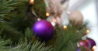 A man puts a purple Christmas tree ball on a Christmas tree...