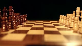 A person takes the black and white king and puts them in the middle of a chess board among the other chess pieces...