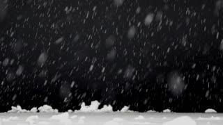 A shot of snow falling isolated on a black background