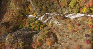 A vertical aerial footage of an unspoiled nature, autumn season and its colorful trees with a small waterfall making a stream...