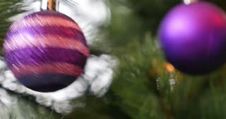 Footage of a purple Christmas tree ball hanging and swinging on a Christmas tree...