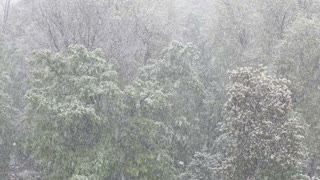 Footage of heavy snow falling...