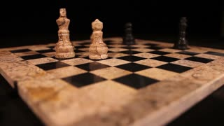 The last standing pieces of a chess game and the last moves...