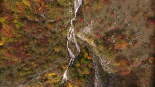 Aerial footage of an unspoiled nature, fall season and its colorful trees with water flowing among the trees...