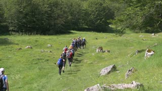 Footage of a group of hikers whiing in the mountain...