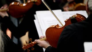 Footage of several violin players playing on their instruments...