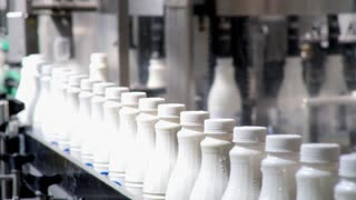 Footage of white plastic milk bottles sorted at the production line and moving forward to be packed...
