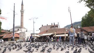 Sarajevo, Bosnia and Herzegovina, 3rd, August 2017 - Slow motion footage of the old town and Sarajevos landmark Sebilj with pigeons all around...