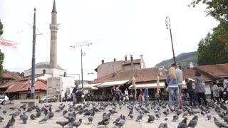 Sarajevo, Bosnia and Herzegovina, 3rd, August 2017 - Slow motion footage of the old town and Sarajevos landmark Sebilj with pigeons all around...