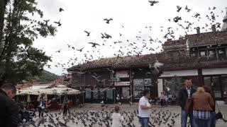 Sarajevo, Bosnia and Herzegovina, 3rd, August 2017 - Slow motion footage of the old town and Sarajevos landmark Sebilj with pigeons flying...
