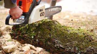 Slow motion of a forester approaching with his chainsaw to a fallen tree and starts to cut it