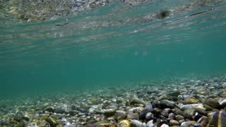 Underwater shot at a river