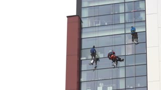 Windows washers cleaning office windows at a high building