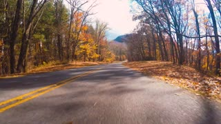 Autumn POV driving shot of the Blue Ridge Parkway