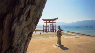 Deer of Miyajima Island in front of Itsukushima shrine