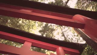 Looking up at the famous orange gates at Fushimi Inari Shinto shrine in Kyoto