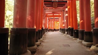 POV walk through the famous orange gates at Fushimi Inari shrine in Kyoto