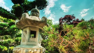 Time lapse in a Japanese garden
