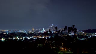 Downtown Los Angeles at night with palm trees in the foreground