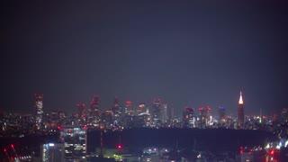 The Shinjuku, Tokyo, Japan skyline illuminated at night
