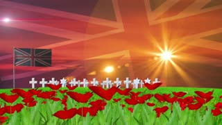 PCM Remembrance Day UK.mov