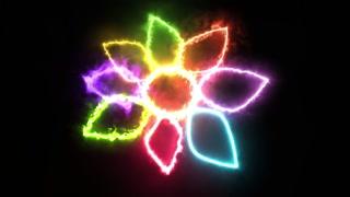 PCM  Sparkling Flower