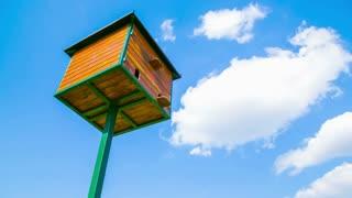 Bird house under the sky timelapse 4K