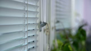 Blinds On Windows in Close Up