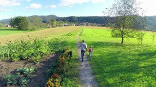 Brothers walking dog in countryside at sunset. Aerial tracking two person walking dog in slow motion with fields in background.