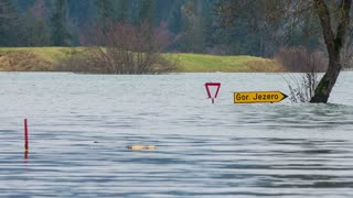 Completely flooded road area. Road signs and tree under water after flooding.