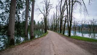 Empty road with lake on both side. Jib shot of gravel road with trees beside and lake on both side.