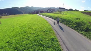 Flying towards young man and dog walking on street in countryside. Slow motion aerial shot at sunset of person walking dog outside in sunny weather on road with green field around.